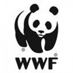 World Wildllife Fund_US_twitter_logo_400x400